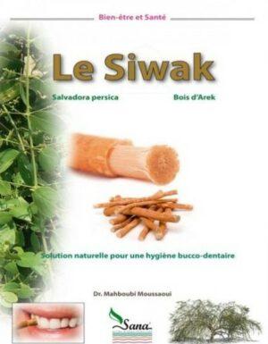 Le Siwak solution naturelle pour une hygiène bucco-dentaire