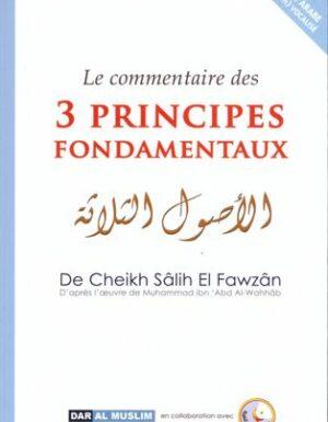 Le commentaire des 3 principes fondamentaux-0