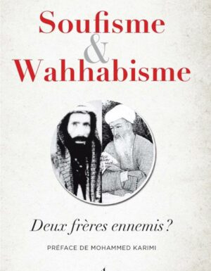 Soufisme et wahhabisme - deux frères ennemis